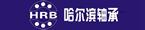 中国哈尔滨轴承制造有限公司